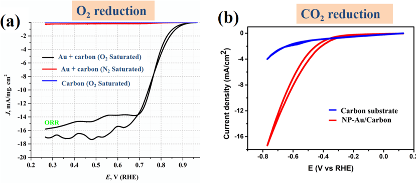 Figure 1: Investigation of O2 reduction (a) and CO2 reduction (b) properties of nanoporous Au.